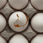 The American Egg Board reacted in frustration to comments by TV show host Andrew Zimmern and articles on multiple websites about Hampton Creek. | Photograph: Alamy Stock Photo